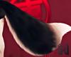 KOBE BatDog Wolf Tail