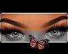 Venus brows