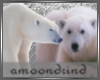 AM:: Polar Bears Enh