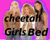 Cheetah Girls Bed
