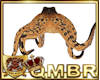 QMBR Atlantis Octopus