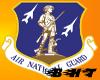 Air Ntl Guard Emblem
