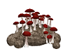 Witch Mushrooms 5