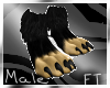 (M)Test Anthro Paws [FT]