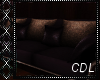 !C* Seattle Couch