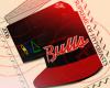 SS Bulls TI$A Bred