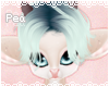 P! Vanilla Hair 14