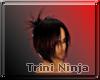 Trini Ninja Male hair