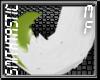 [ST] Sueshe Tail