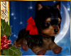 I~Yorkie*Red Bow