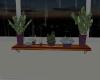 RN Plant Shelf