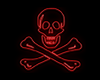 Ed England Neon Pirate
