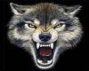 Wolf Fang Mc Home