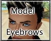 HD Model Eyebrows
