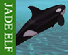 [JE] Animated Orca