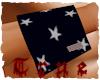 {True} American Flag LW