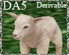 (A) Baby Lamb Pet
