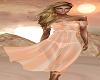 Long Windy Sheer  Dress