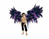 Rave Purple Wings