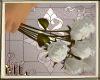 [ML]White Roses w/poses