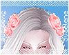 Encore Hair Roses 2