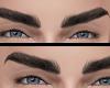 eyebrows l
