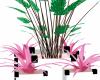 white,pink plant