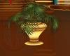 EB Floor Palm