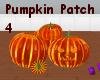 *Pumpkin Patch 4*  small