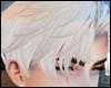 Platinum Boy Hair