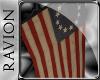 R: 13 Colony Wall Flag