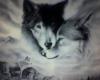 ~MNY~Wolf Background