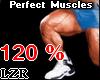 Muscles Legs *PT 120%