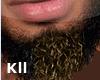Beard^YUN.