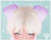 Y| Puppy Ears DPurple
