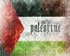 {DESl} Flag Palestine