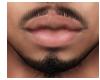 Mustache x Beard Mesh
