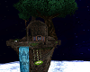 Night Sky Sanctuary