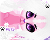[Pets] Kes | hair v3