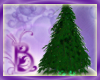 Bou Trad Xmas Tree CP
