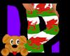!A! Welsh Flag Pants