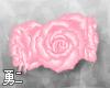 Y' Pink Rose Anklets
