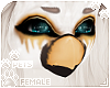 [Pets] Evy | bird head