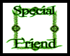 SPECIAL FRIENDS BORDER