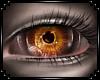 [M/F] Sulfur Eyes