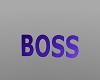 *T*~BOSS~Headsign~