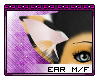 Bubby Ears [M/F]