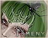 [Is] Spider Mummy Veil