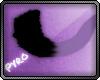 Viola Tail; [P]