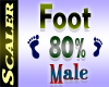 Foot Resizer 80%